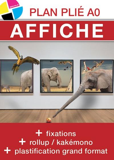 affiche poster plan plie imprimerie agescom geneve suisse